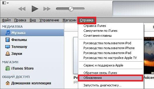 """Сервис Apple iTunes /айтюнс для взаимодействия """"яблока"""" и компьютера"""
